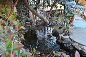 Tokyo Shreveport Outdoor Koi Pond